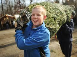 boy scouts hold christmas tree sales connecticut post
