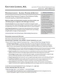 Manager Sample Resume Free Term Paper Lab Sample Resume Of Finance Officer Professional