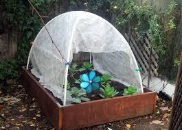 qt u0027s random ramblings garden tutorial how to make a super cheap