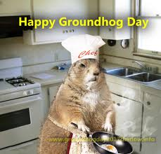 happy groundhog images crazy wishes pictures