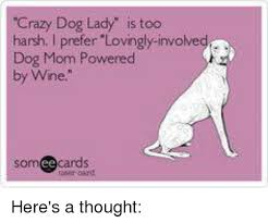 Crazy Dog Lady Meme - crazy dog lady is too harsh i prefer lovingly involved dog mom