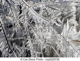 stock image of icicles up of icicles on tree branches