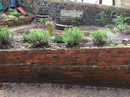 Scottish Rock Garden Forum Lavender In Scotland Forum Gardenersworld
