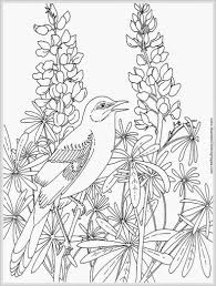 free coloring pages of birds 72 best and amazing free coloring pages gianfreda net