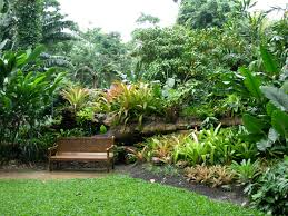 Interior Design Cairns Cairns Botanic Gardens Flecker Botanical Idolza