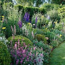 Cottage Garden Layout Summer Cottage Garden Plan Garden Planning Delphiniums And Gardens