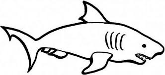 goblin shark coloring free printable coloring pages