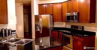 Modern Kitchen Cabinet Pictures Top 5 Modern Kitchen Cabinet Designs Tolet Insider