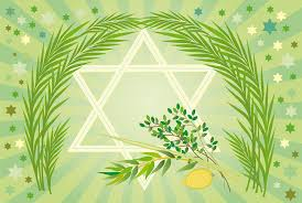 sukkot supplies sukkot 5774 rabbi debra nesselson