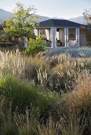 244 best inspiration grasses images on landscaping