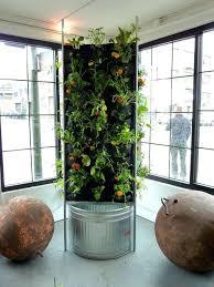 Indoor Vertical Gardens - aquaponic vertical vegetable garden indoor vertical garden kit uk