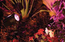 Intellibrite Landscape Lights Hayward Colorlogic Swimming Pool Light