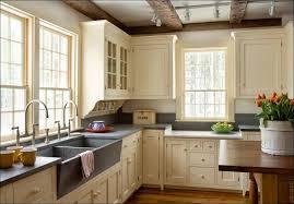 Navy Blue Kitchen Decor by Kitchen Navy Blue Kitchen Decor Kitchen Cabinet Wood Colors Ikea