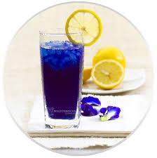 butterfly pea flower tea it s blue high