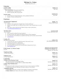 Sample Resume Of Ceo Standard Resume Template Microsoft Word Zuffli