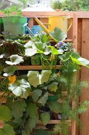 vertical garden an eco friendly vertical garden of homegrown edible plants u2014 chic