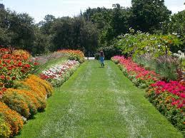ornamental gardens tour friends of the central experimental farm