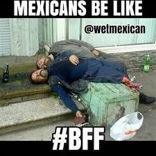 Latino Memes - 12 best latino memes images on pinterest ha ha funny stuff and
