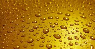 golden water drops business card invitation etc photograph by
