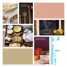 asian paints colour pro inspired interiors book asian paints