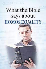 what the bible says about homosexuality phlet tgs international