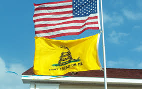 First Navy Jack Flag Double Sided Flags Reads Properly On Each Side Gadsden And