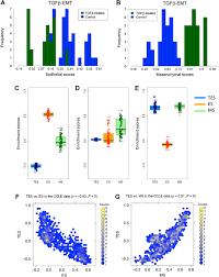 a transcriptional program for detecting tgfβ induced emt in cancer