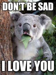Sad Memes About Love - don t be sad i love you surprised koala quickmeme