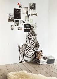 papel magnetico zebra afiche pinterest bedrooms and house papel magnetico zebra