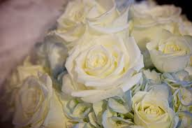 White Rose Bouquet White Rose Bouquet Detail Free Stock Photo Public Domain Pictures