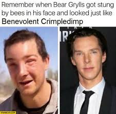 Cumberbatch Meme - remember when bear grylls got stung by bees in his face and looked