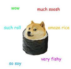 Funniest Doge Meme - sushi doge abby pinterest doge memes and meme