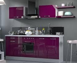 cuisine des aubergines stunning meuble de cuisine gris pas cher contemporary design