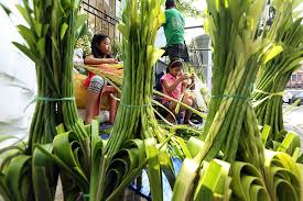 palm fronds for palm sunday beyond palm fronds prepare to crosses headlines news