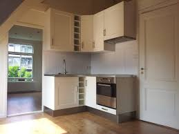 build in kitchen pantry ideas with laminated door house design