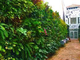Vertical Gardens Miami - green wall live wall u2013 truvine design