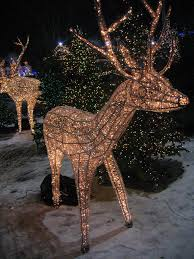 Deer Christmas Lights Christmas Eve In Austin Events And Activities