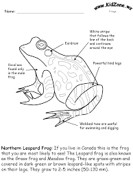 frog activity sheet labeling a northern leopard frog easy