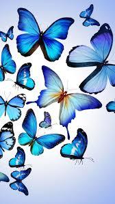 312 best i love butterflies images on pinterest butterflies