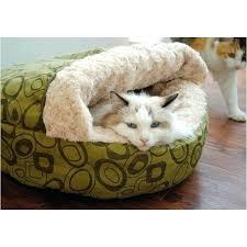 cat beds u2013 theoneart club