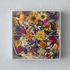 Decorative Flowers by Dried Decorative Flowers Terrain