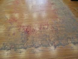 Area Rug Cleaning Portland by Persian Rug Cleaning Portland Oregon Best Rug 2017