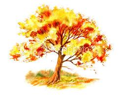 the symbolism of trees ii