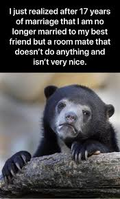 Patient Bear Meme - my first confession bear meme and it s very saddening to me as i