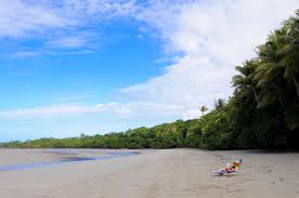 The Beach House Cape Tribulation by Top 3 North Queensland Campsites Without A Hitch Without A Hitch