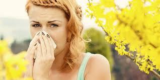 hilfe gegen haushaltsschädlinge vitagate heuschnupfen tipps und behandlungsinfos puravita ch