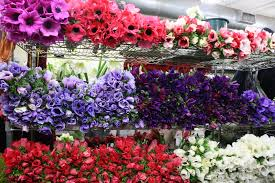 wholesale flowers g page wholesale flowers flirty fleurs the florist