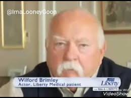 diabeetus with wilford brimley ft diabeetus cat youtube