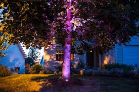 Led Color Changing Tree Uplight