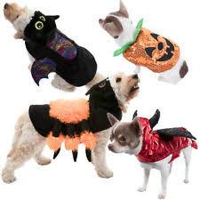 Spider Dog Halloween Costume Costumes Dogs Ebay